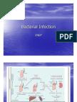 Infeksi Bakteri