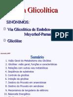 glicolise