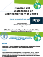 FAO Tania Santivañez HLB Manzanillo