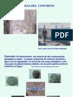 Salvador patologia