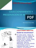 II Clase de Entomologia Colleccionamiento y Presevacion de Insectos