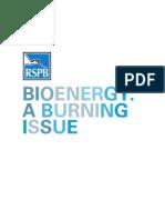 Bioenergy a Burning Issue