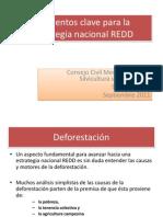 Elementos Clave de La Estrategia Nacional REDD