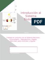 Introducción al Sistema Endocrino