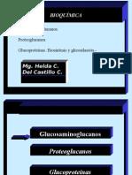 Glicoproteínas