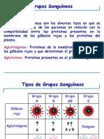 Grupos_Sanguineos