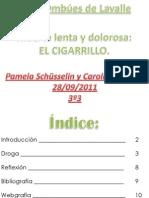 Droga! El cigarrillo - Pamela Schüsselin y Carolina Pontet - 3º3
