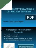 Crecimiento y Desarrollo Del Maxilar Superior