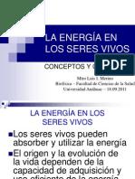 Energia-Seres vivos
