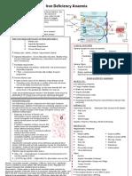4.01 Page Summary - Anaemia