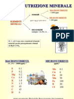 11) Nutrizione Minerale Nv