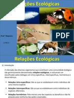 Aula -  Relações Ecológicas