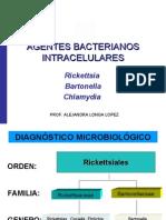 Agentes Bacteria Nos Intracelulares Definitivo