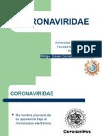 Corona Virus y Retrovirus