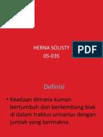 ISK Herna