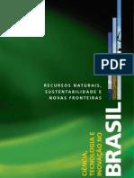 CIÊNCIA TECNOLOGIA INOVAÇÃO E MEIO AMBIENTE NO BRASIL