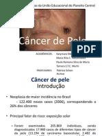 Câncer de Pele (2)definitivo