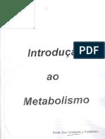 Aula_01_-_Introdução_ao_Metabolismo