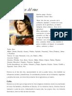 Dionisos / Baco
