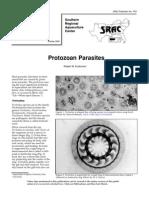 Protozoan Parasites