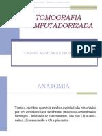 anatomiaeprotocolotccranio-091014130709-phpapp02