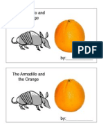 The Armadillo and the Orange