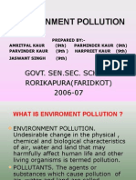 De Project Pollution