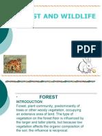 Forest and Wildliferaj