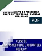 Slides_Auriculo Módulo VI