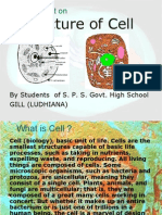 Structure of CELL GillB LDH