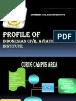 Profile STPI_group 2