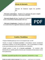 clase_Mendel_completa