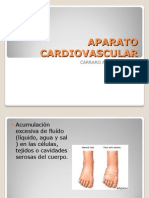 Aparato Cardiovascular Nuevo