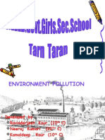 Pollution Tarn Taran(g)_Taran Taran