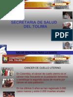 Cancer_de_cuello_uterino_2008[1]