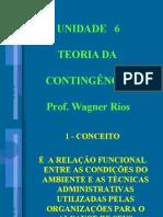 UNIDADE 6 - TEORIA DA CONTINGÊNCIA - CONTEÚDO