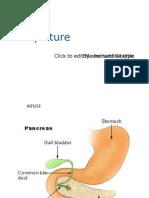 Git Physiology