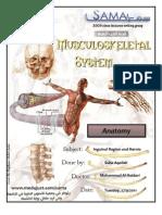 Anatomy - Lec.13