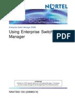 Using Enterprise Switch
