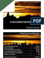 A Pecuaria Em Rondonia 2008
