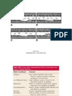 Bases Moleculares de La Activación Plaquetaria