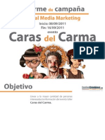 Informe público campaña SMM Caras del Carma