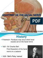 Anatomy of Facial Nerve