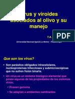2.- Virus Asociados Al Cultivo de Olivo y Su Manejo