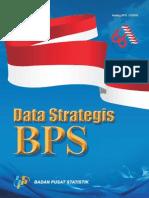 Data Strategis 2011