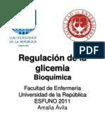 Regulacion de La Glicemia Clase 7
