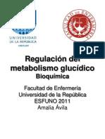 Regulacion Metabolismo Glucidico y Control Glicemia Clase 6
