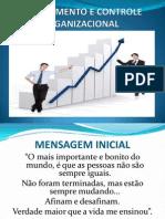 to e Controle Organizacional Santos (1)