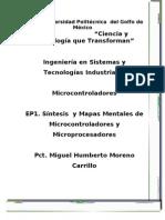 EP1 MIM Rosario Del Carmen Guemez Flores