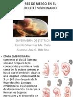 1factores de Riesgo en El Desarrollo Embrionario